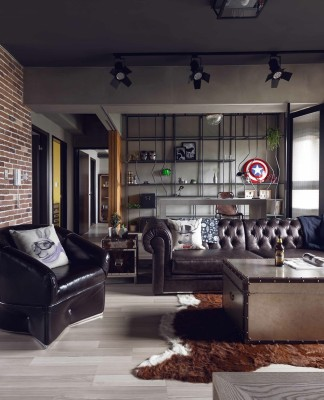 Masculine apartment design