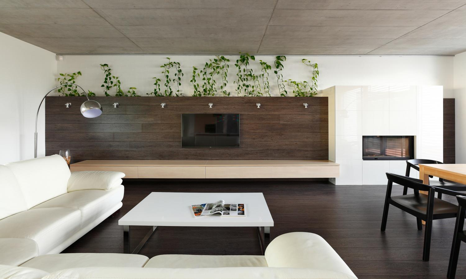 Indoor plants inspiration for your apartment decorating idea roohome designs plans - Decorate apartment ...