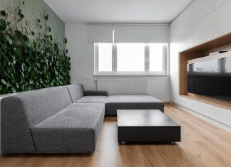 Elegant living room interior design