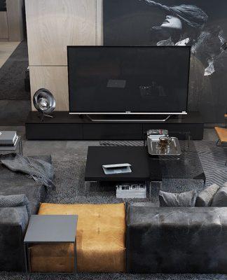 Dark Living room interior design