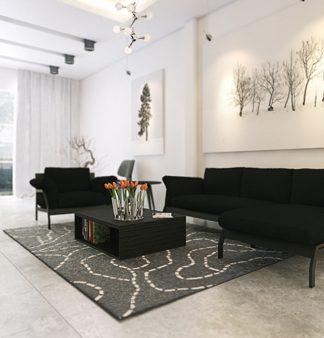 living room monochrome designs