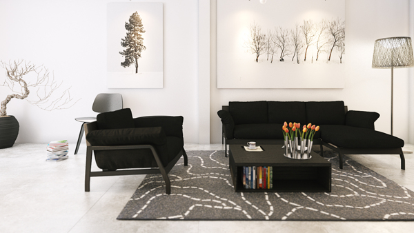 monochrome living room home designs
