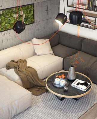 modern apartment with natural element
