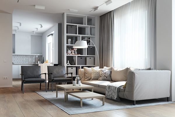 Minimalist idea makes living room cozy
