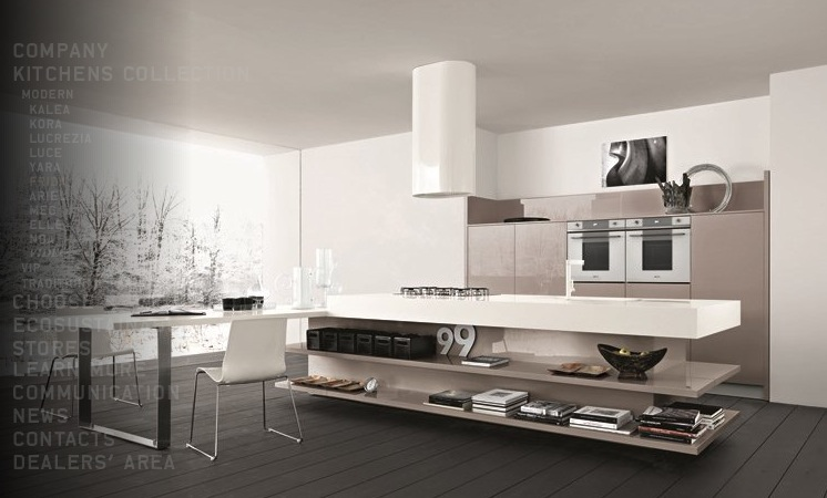 modern kitchen design looks trendy