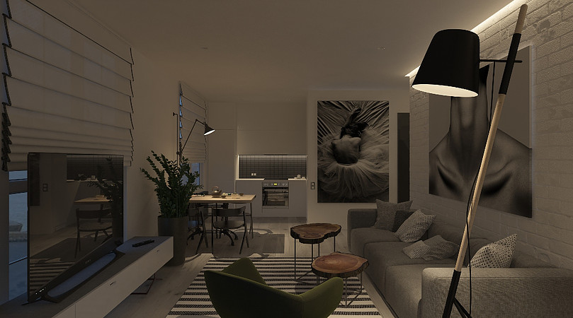 modern and cool living room