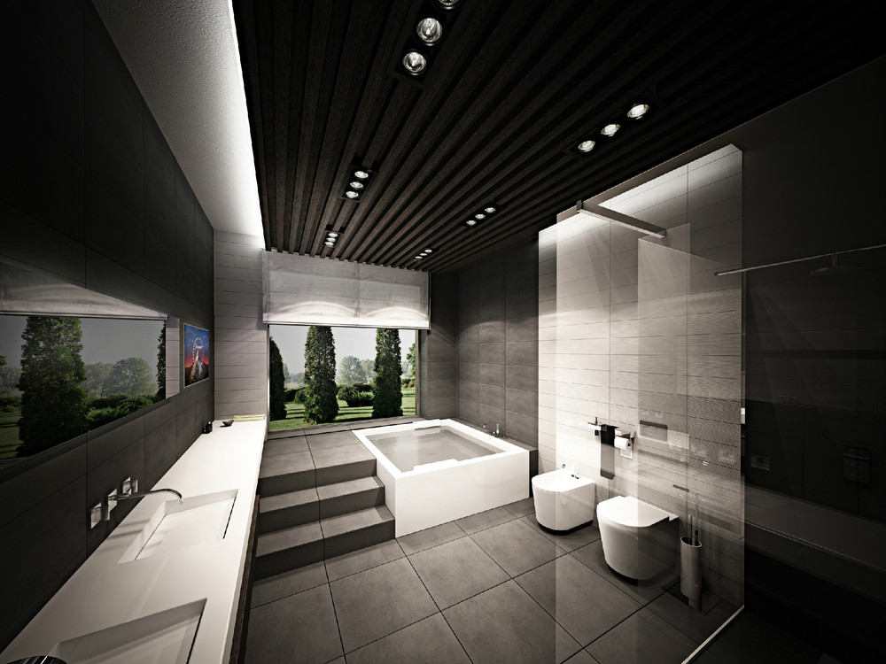 3 kind of luxury bathroom designs which have variety of for Dark bathrooms design
