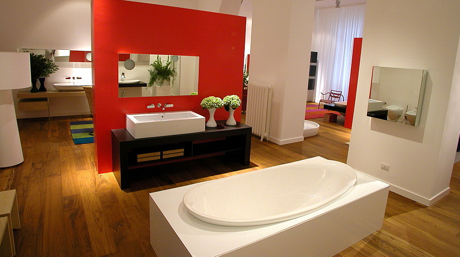 spacious bathroom decoration