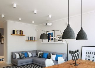 Scandinavian small living room design