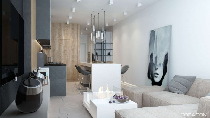 Luxury Small Studio Apartment Design Combined Modern And Minimalist Style Decor Looks Stunning