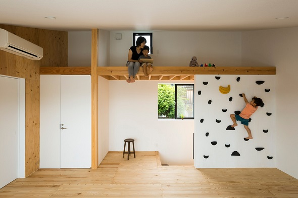Minimalist single home design