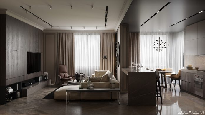 Luxurious Studio Apartment Matched With Modern And