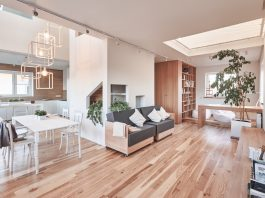 modern minimalist open plan design