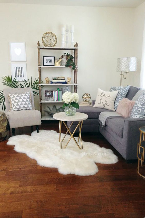 Small modern living room design