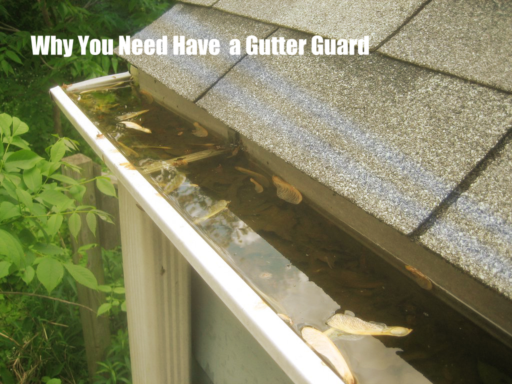 why you need a gutter guard copy