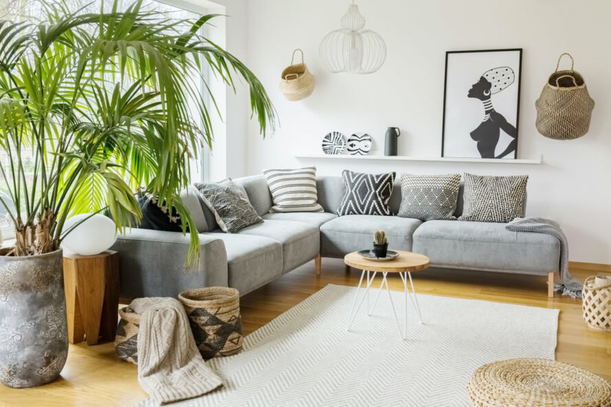 Ideas To Decorate Indoor Plants In Your Living Room Roohome