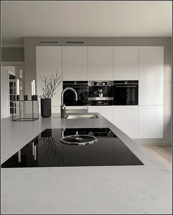 Black and White Modern Kitchen Idea
