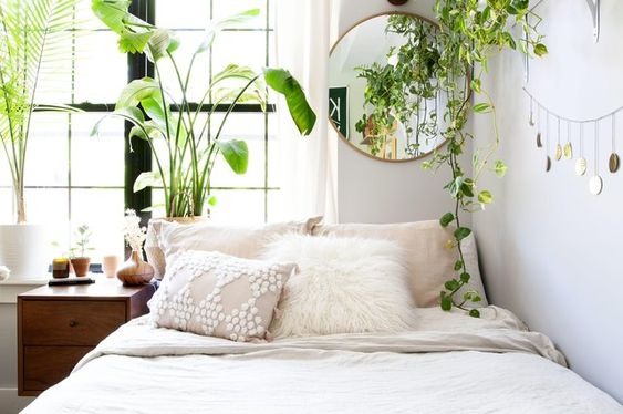 plant bedroom decor