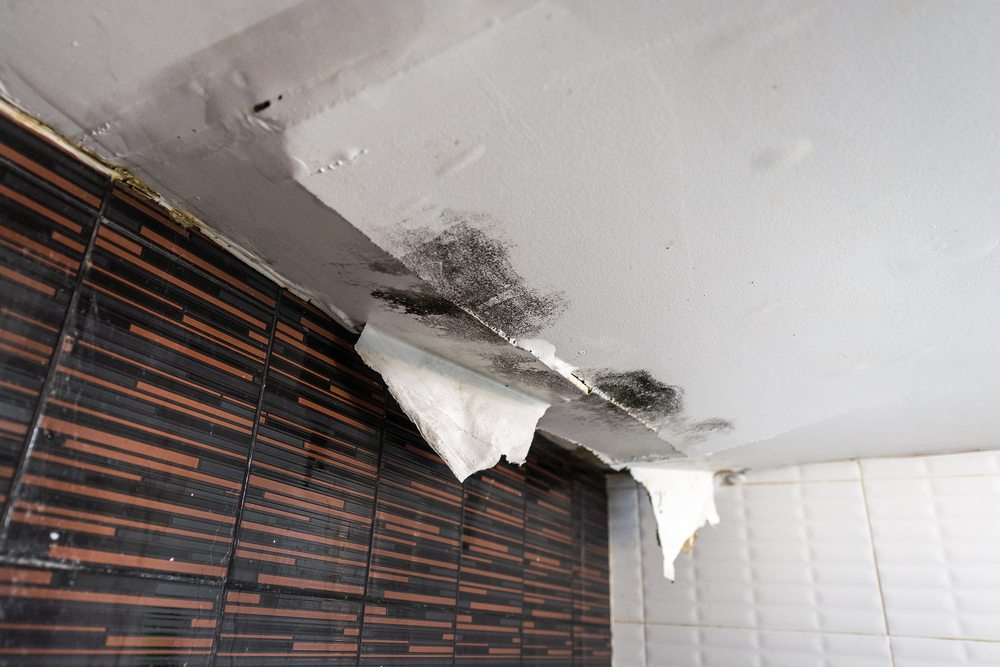 damage to ceiling