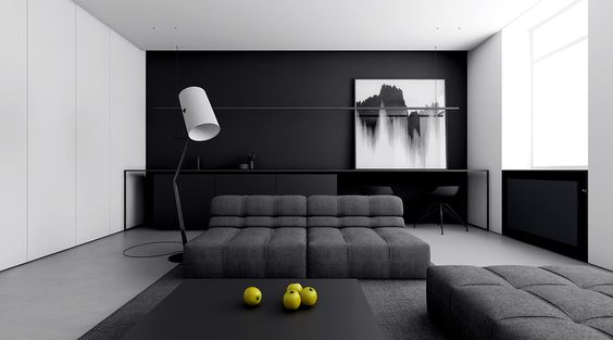 elegant monochrome living room ideas